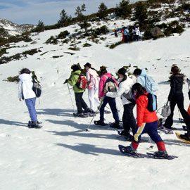Actividades para el invierno y el resto del año